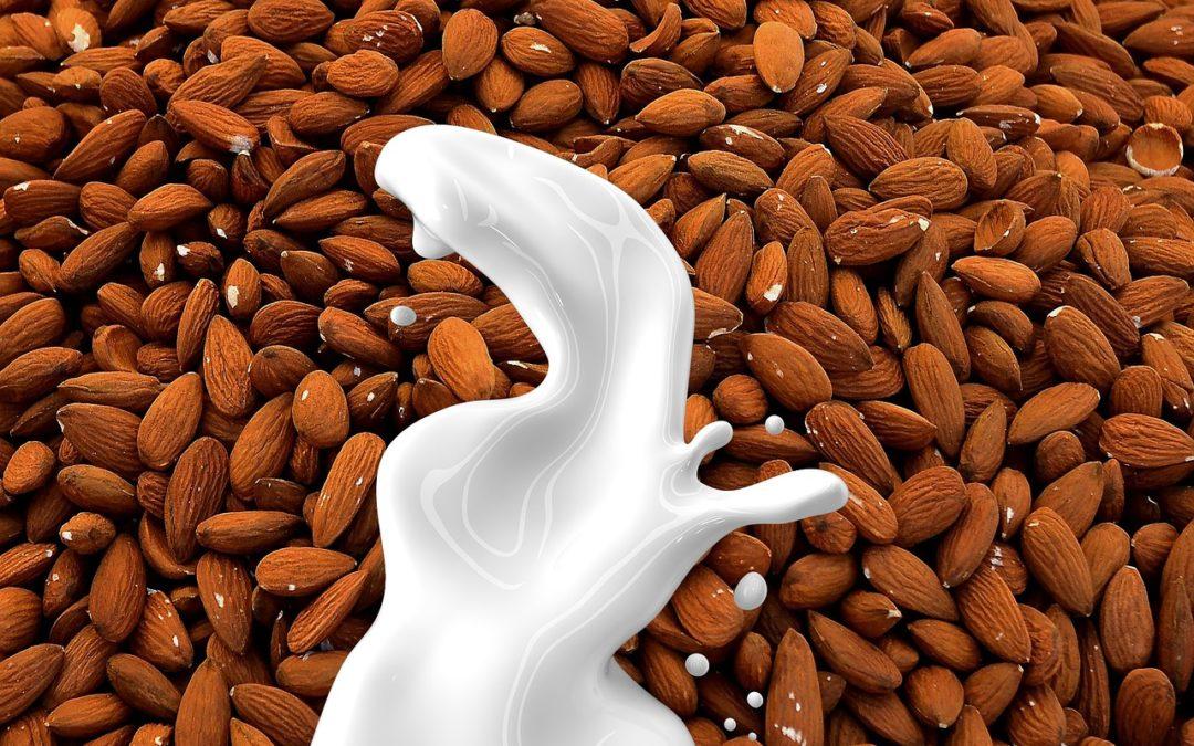 Mandelmilch, Hafermilch, Reismilch als Ersatz?